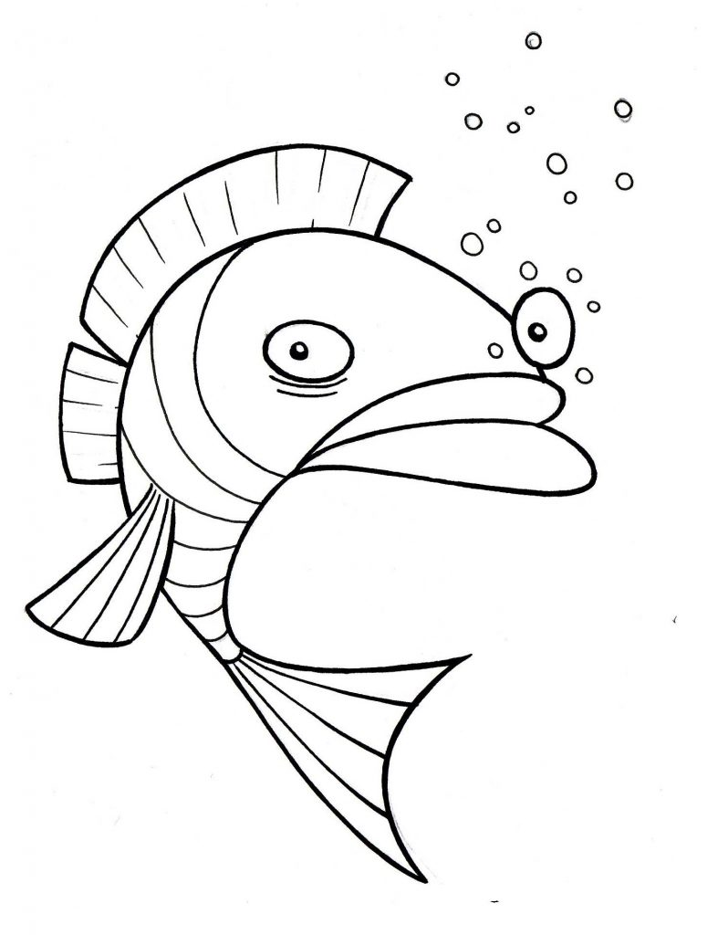 Funny Face Fish