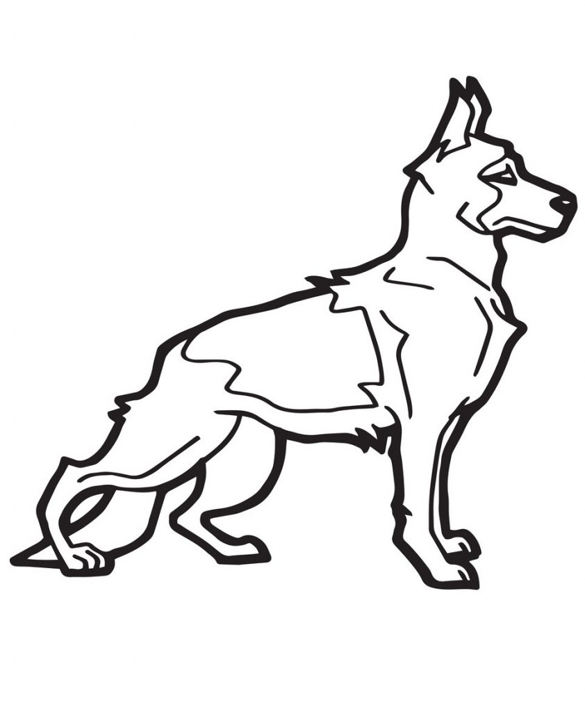 A Strong Dog
