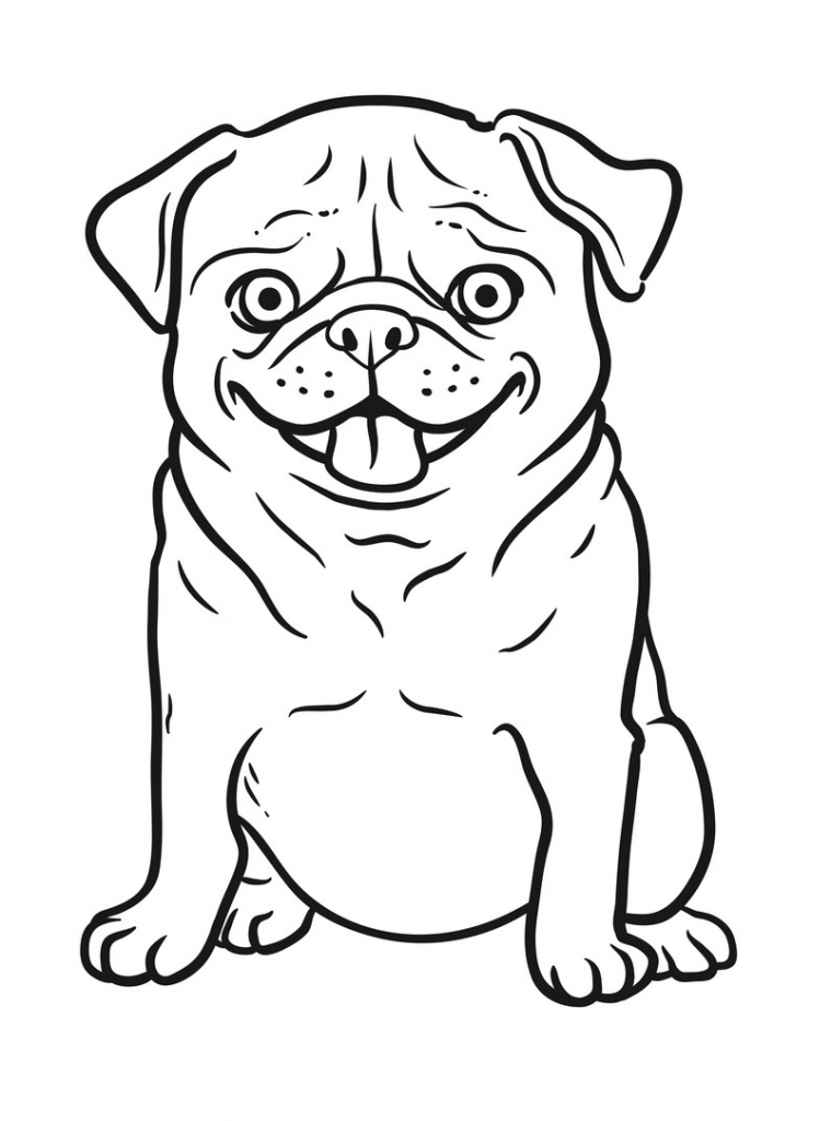 Pug Coloring Pages - Best Coloring Pages For Kids | 1024x759
