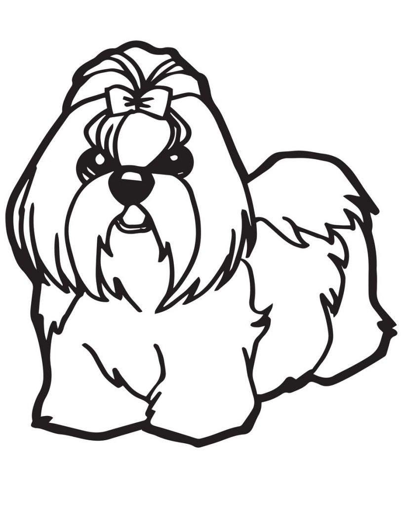 It is a photo of Terrible Shih Tzu Coloring Pages