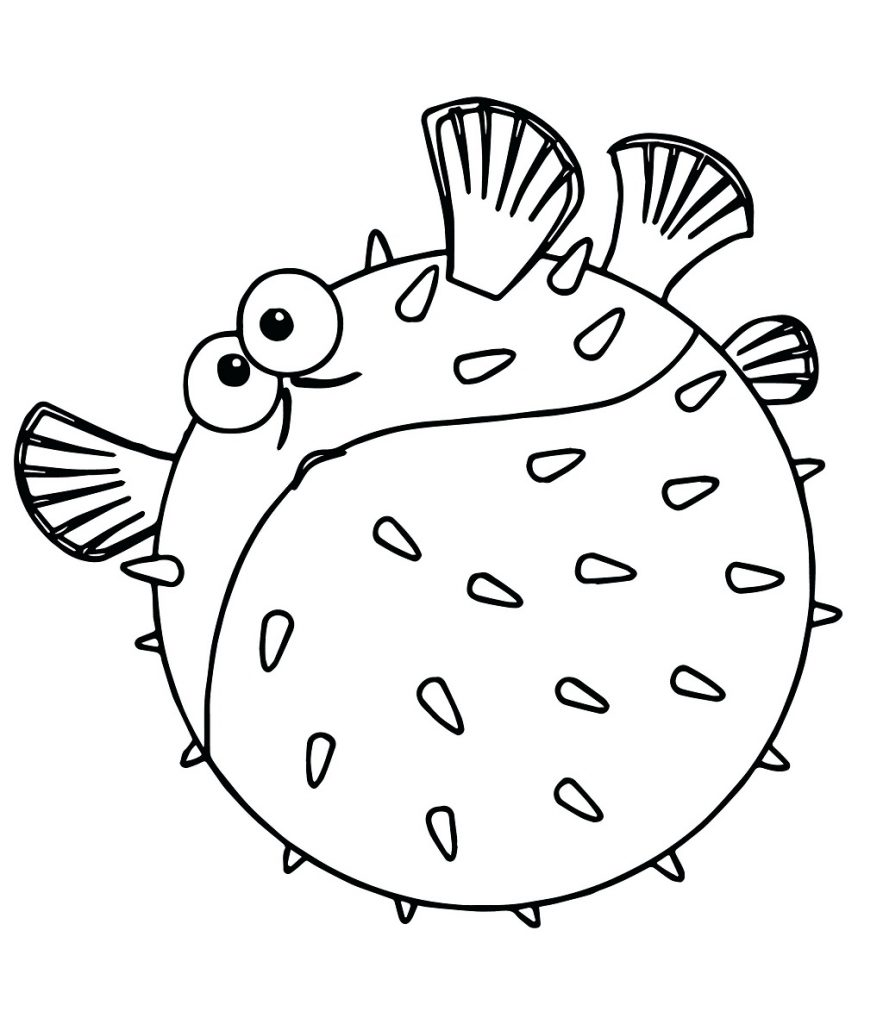 Funny Puffer Fish