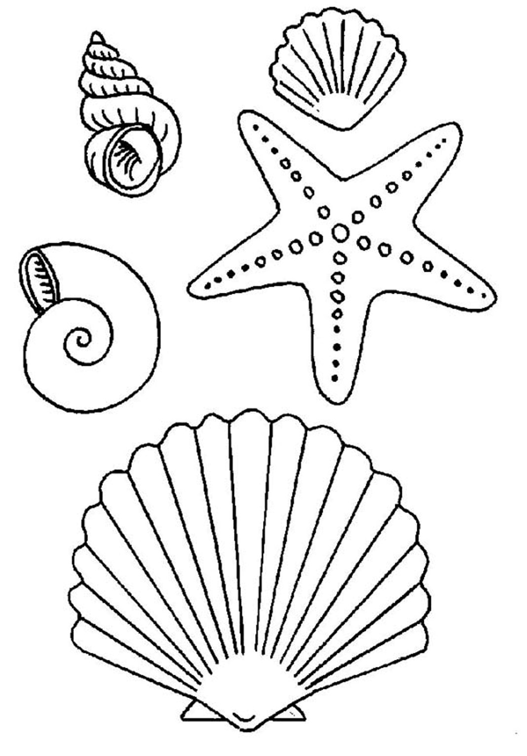 This is a graphic of Seashell Template Free Printable with editable
