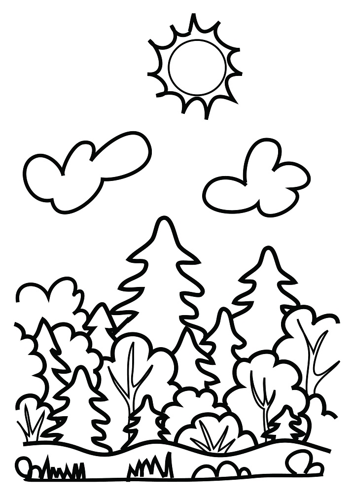 Fantasy forest by Stefania Miro_4 | Garden coloring pages, Adult ... | 1012x718