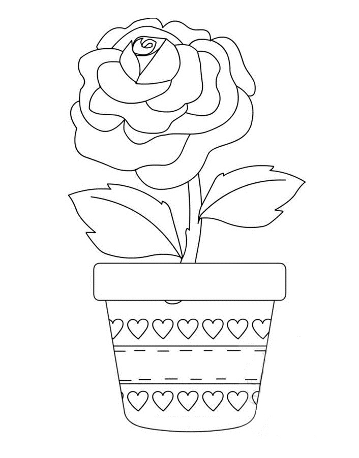 Rose in a Pot