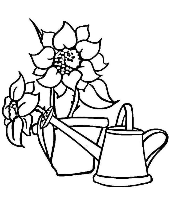 Watering Can, Sunflowers