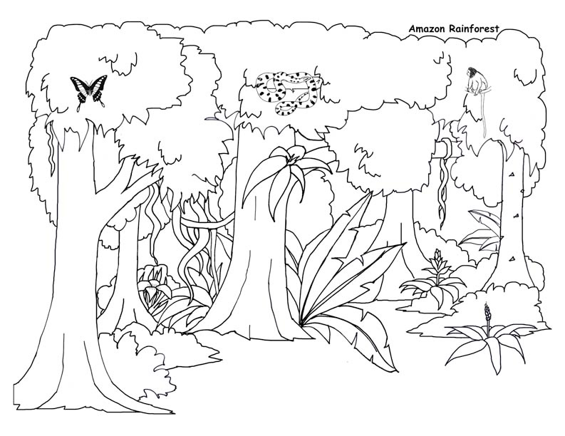 - Printable Amazon Rainforest Coloring Page For Both Aldults And Kids.
