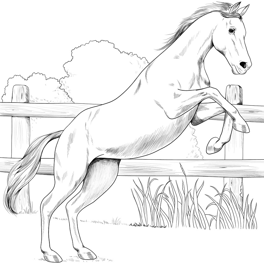 Arabian Horse Lineart by ReQuay on deviantART | Horse pictures to ... | 850x850