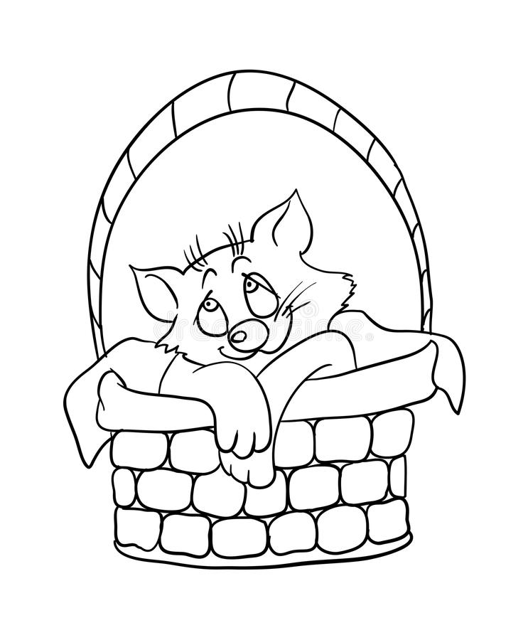 Red Nose Cat in the Basket