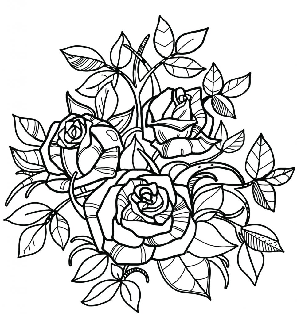 Printable Beautiful Roses coloring page for both aldults ...