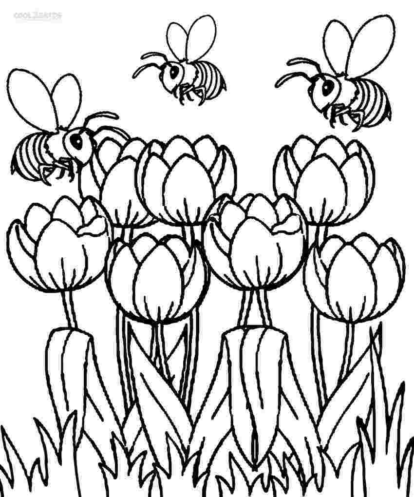 Tulips and Bees