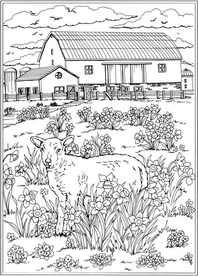 Farm on the Prairie