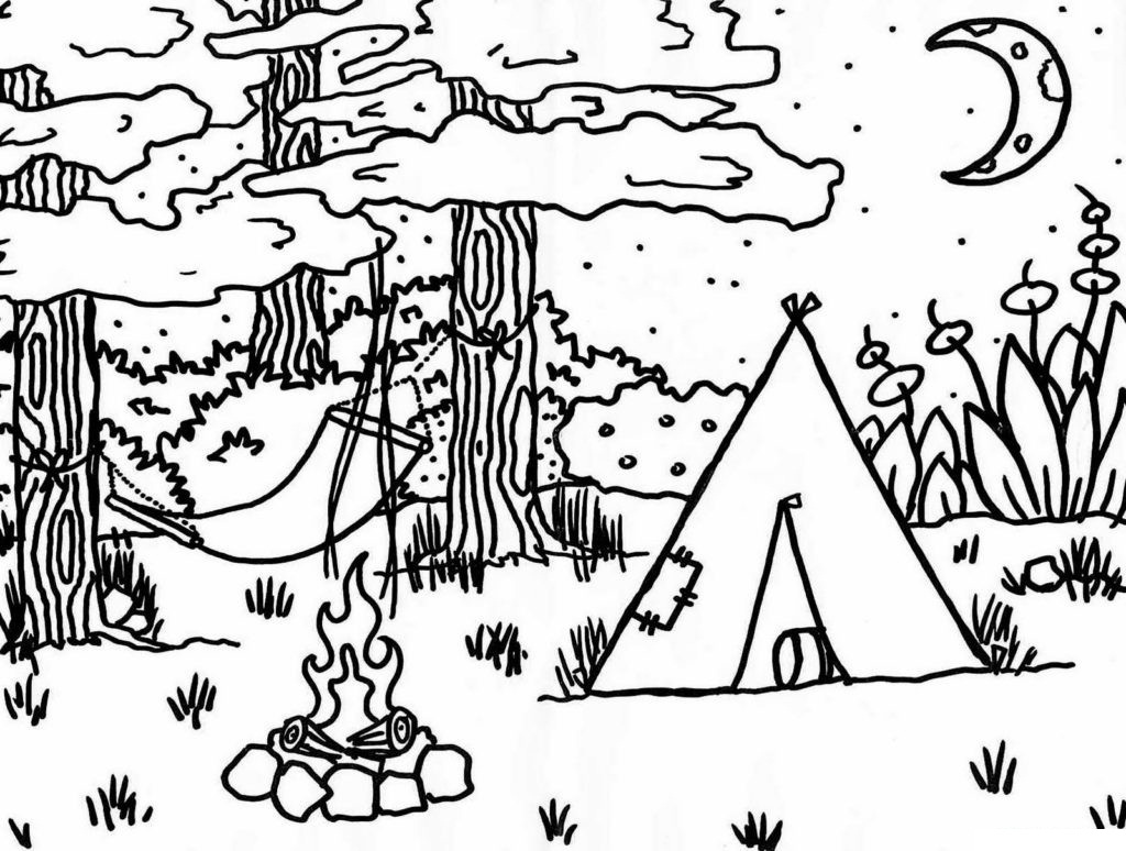 Camp-fire in the Woods