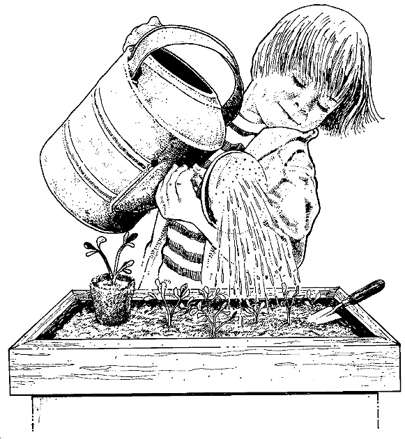 Boy Watering for Plants