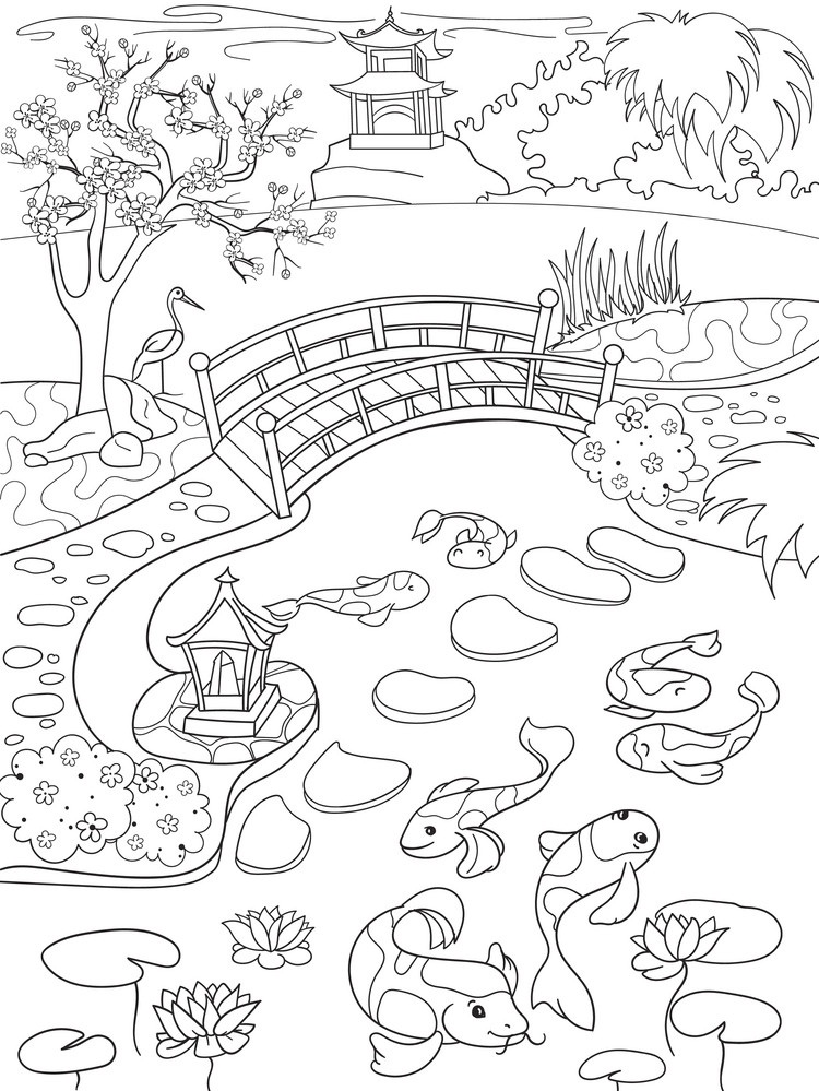 Koi Fish Pond Landscape