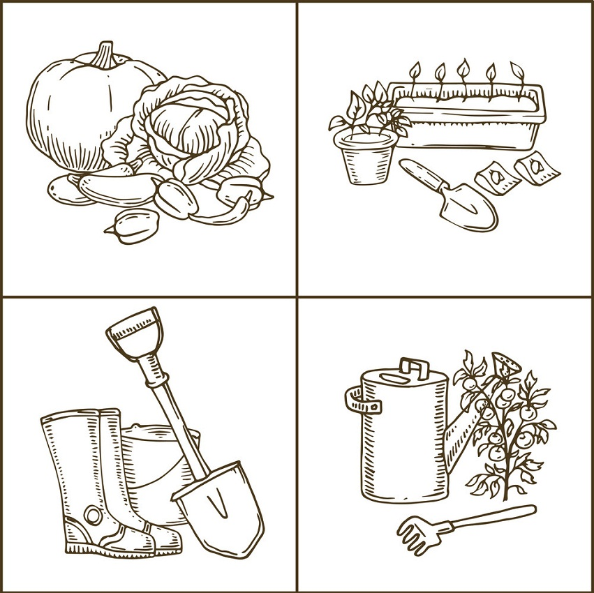 Garden Tools with Plants